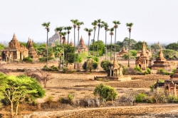 Beautiful Bright Shot of The Pagodas of Bagan