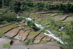 Banaue Rice Terraces Planting Season