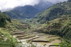 Wet Water at Banaue Rice Terraces