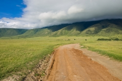 In the Ngorongoro Crater