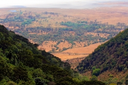 Wonderful View of Ngorongoro From High Point