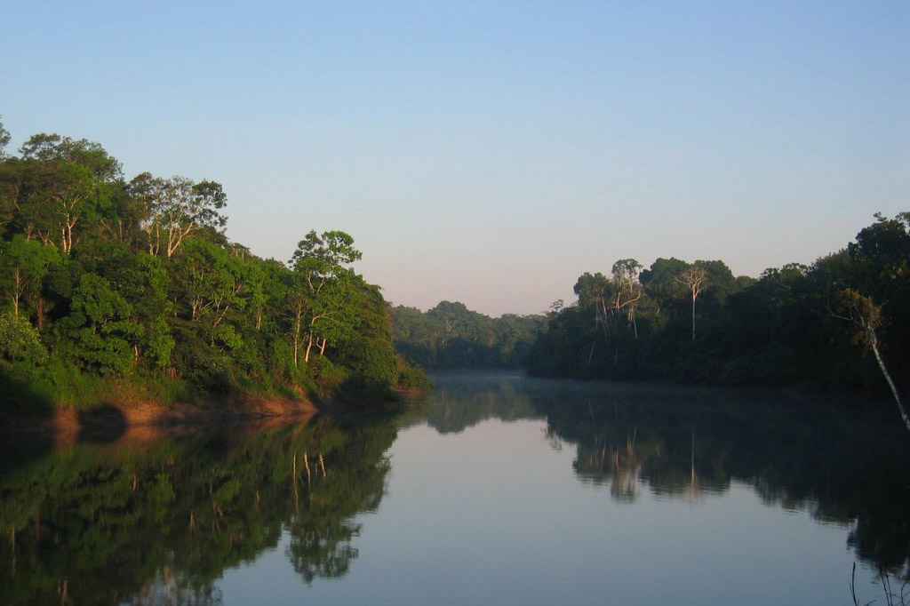 36 Excellent Photos Of Colombia Amazon Rainforest The