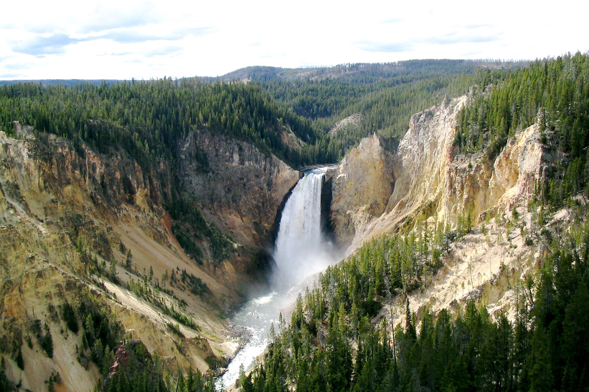 Image result for yellowstone park