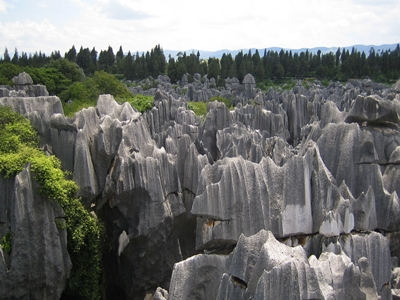 The Stone Forest 400