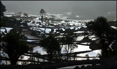 Yuanyang Rice Terraces 400