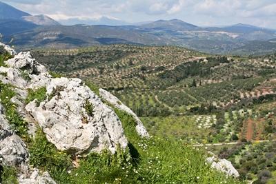 Mycenae 400