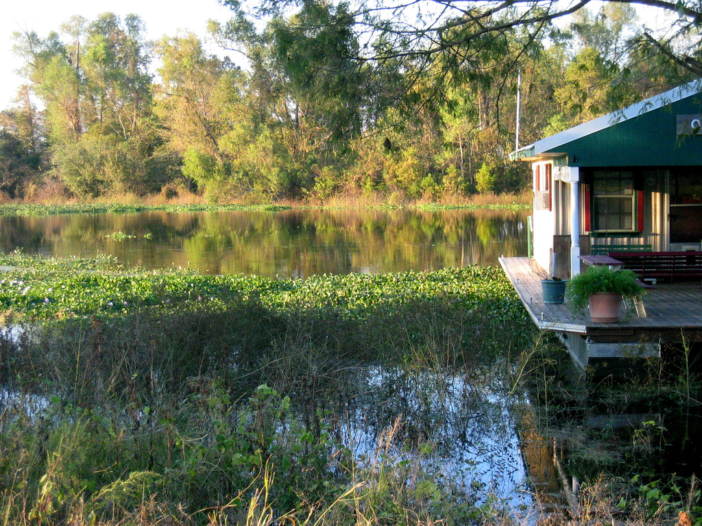 Bayou S Of Louisiana Travel Attractions Amp Facts