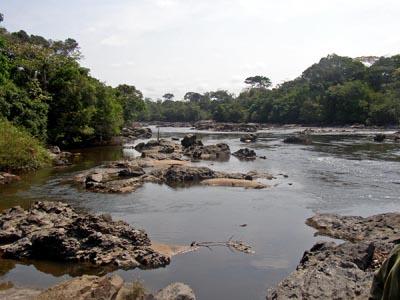 Epulu_Okapi_Reserve 400