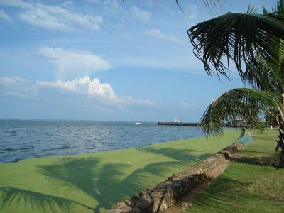 Lake Maracaibo 400