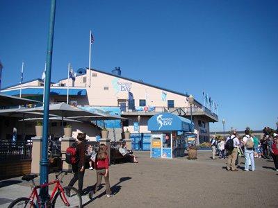Emsalsov Steinhart Aquariumcalifornia Academy Sciences