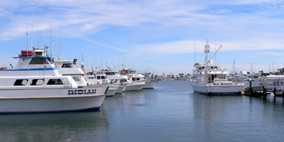 Point loma for Point loma sport fishing
