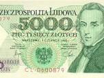Polish Zloty