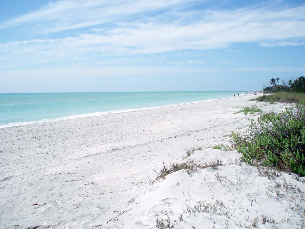 Sanibel Island Florida: Best Beaches In Florida