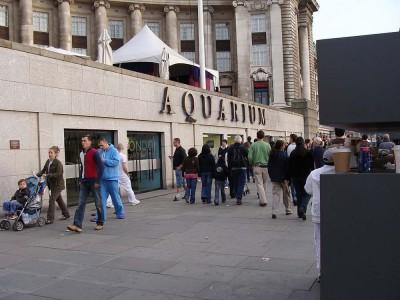Sea-Life-London-Aquarium
