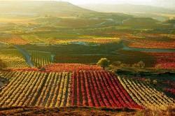 La-Rioja-Spain