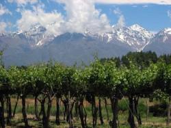 Province-of-Mendoza-Argentina
