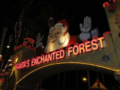 Santa-enchanted-forest