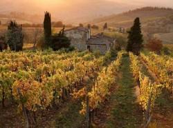 Southern-Tuscany