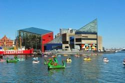 Baltimore-Aquarium