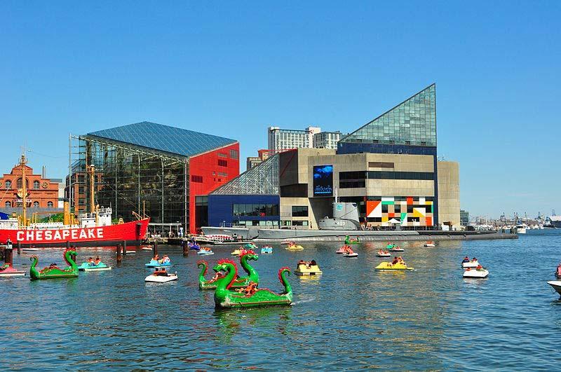 Best Aquariums in the United States