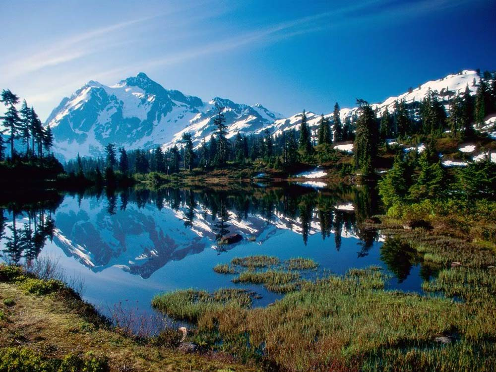 Best Camping Locations in the United States