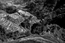 Banaue Rice Terraces Black and White