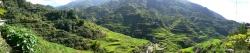 Panorama View of Banaue Rice Terraces