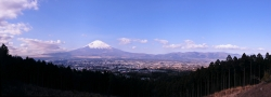Panorama of Fuji With Cities and Trees