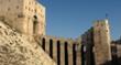 The Aleppo Citadel