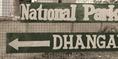 Dhangari